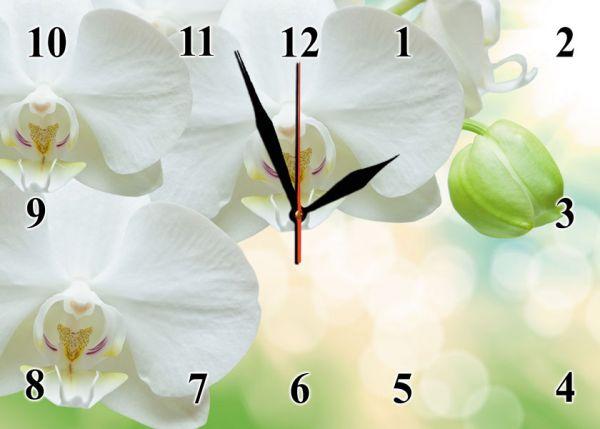"""Настінний годинник """"Білі орхідеї"""" на склі"""